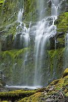 Proxy Falls near McKenzie Pass in the Three Sisters Wilderness, Oregon