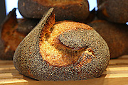 "Freshly baked loaf of bread at a bakery. This image was part of a photo exhibition ""Let there be Bread"" by Oren Shalev in the Eretz Israel Museum in Tel Aviv, Israel. The motif of the exhibition was bread. Such a basic food yet so complex and diverse. The images were produced by following the nightly work at a bakery from start to finish. To view all images from this exhibition please search for breadexhibition"