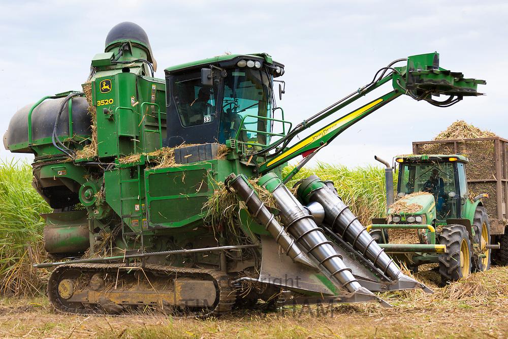 Cutting and harvesting sugarcane in the Fall at plantation along the Mississippi at Baldwin, Louisiana, USA
