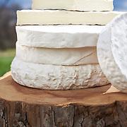 20160408 cheeses tif