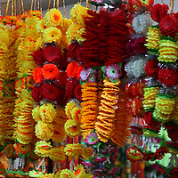 Asia, India, Delhi. Colorful flower garlands hang in Old Delhi.