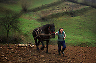 Rural Romanian woman and horse plowing the land. Maramures, Romania