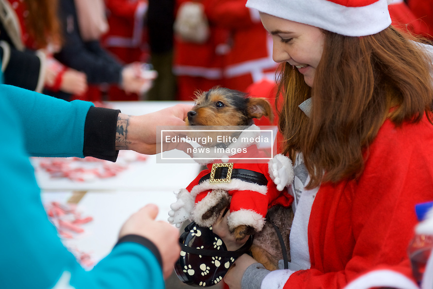 Everyone gets a medal in Scotland's fundraising Santa's run, walk and stroll around Edinburgh's West Prices Street Gardens, raising money to grant the Wishes of Children for When You Wish Upon A Star. Sunday 11th December 2016. (c) Brian Anderson | Edinburgh Elite media