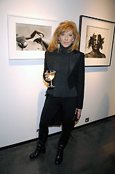 KELLY HOPPEN at a private view of 'Something for Everyone' an exhibition of work by various photographers at Hamiltons Gallery, London on 18th March 2008.<br /><br />NON EXCLUSIVE - WORLD RIGHTS