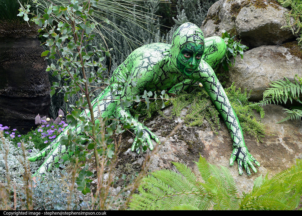 "© Licensed to London News Pictures. 20/05/2013. London, UK An actor dressed as a lizard in the ""Trailfinders Australian Garden"". Press day at Chelsea Flower Show 2013. The centenary edition of the show attracts large number of visitors and is already sold out before opening day. Photo credit : Stephen Simpson/LNP"