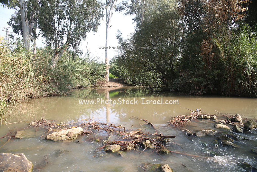 Off the beaten track in Israel A natural trail on the banks of the Yarkon river