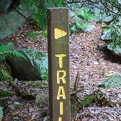 Benton, PA, USA - June 15, 2013: Trail sign in Pennsylvania's Ricketts Glen State Park.