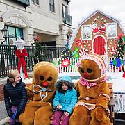 Gahanna Holiday Lights Celebration