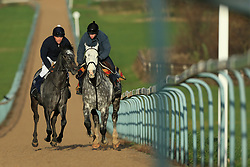 23rd November 2017 - Michael Owen Horse Racing - Former footballer Michael Owen (L) takes to the gallops at Manor House Stables in Cheshire alongside retain jockey Richard Kingscote ahead of his first ever race as a jockey - Photo: Simon Stacpoole / Offside.