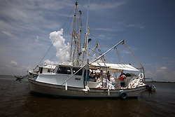 06 June 2010. Barataria Bay to Grand Isle, Jefferson/Lafourche Parish, Louisiana. <br /> Shrimpers surrounded by oil boom on their boat in Barataria Bay. The shrimp boaters should be sweeping the waters for up to $5,000 worth of beautiful Gulf shrimp a day but the fishing grounds are all closed. Instead they are making around $1,000 a day for  BP contractors instead, a fraction of what they would ordinarily be making. The fishermen do not have  fixed contracts with BP and does not know when BP will stop hiring them. The debt collectors have been calling asking for their money. The shrimpers advise them to call BP. They know their lives will never be the same again. The ecological and economic impact of BP's oil spill is devastating to the region. Oil from the Deepwater Horizon catastrophe is evading booms laid out to stop it thanks in part to the dispersants which means the oil travels at every depth of the Gulf and washes ashore wherever the current carries it. The Louisiana wetlands produce over 30% of America's seafood and are the most fertile of their kind in the world.<br /> Photo; Charlie Varley/varleypix.com