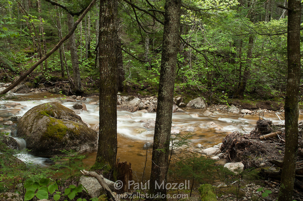 Drake's Brook in the White Mountain National Forest, New Hampshire