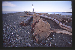 Rialto Beach, Olympic National Park, Washington, US