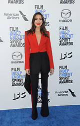 Aubrey Plaza at the 35th Annual Film Independent Spirit Awards held at the Santa Monica Beach in Santa Monica, USA on February 8, 2020.