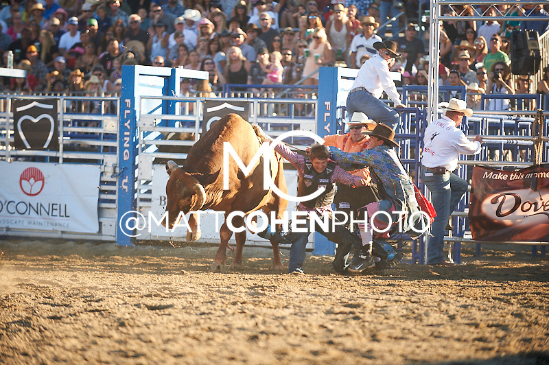 Bull rider Paul Coppini of Kuna, ID rides 812D Big Bird at the Rancho Mission Viejo Rodeo in San Juan Capistrano, CA.<br /> <br /> <br /> UNEDITED LOW-RES PREVIEW<br /> <br /> <br /> File shown may be an unedited low resolution version used as a proof only. All prints are 100% guaranteed for quality. Sizes 8x10+ come with a version for personal social media. I am currently not selling downloads for commercial/brand use.