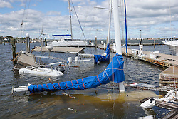 October 8, 2016 - St. Augustine Beach, Florida, U.S. - WILL VRAGOVIC       Times.Masts of sailboats sunk in their slips seen at Conch House Marina Resort in the wake of Hurricane Matthew in St. Augustine Beach, Fla. on Saturday, Oct. 8, 2016. (Credit Image: © Will Vragovic/Tampa Bay Times via ZUMA Wire)