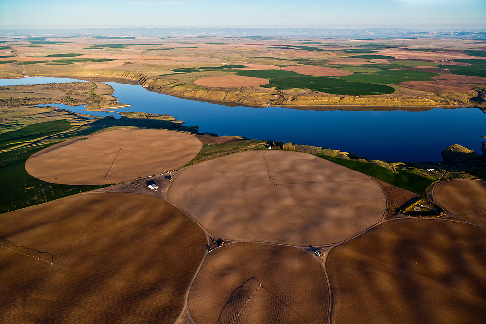 Aerial view of crop circles from center pivot irrigation systems along the Snake River just before it joins the Columbia River at Tri-Cities, Washington.<br /> (Kennewick, Pasco, and Richland) Licensing - Open Edition Prints