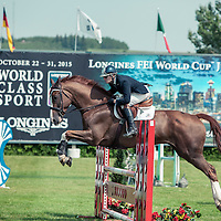 Young Horse GP Ring Partial Coverage