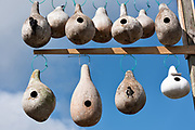 Purple Martin gourd birdhouses along Jeremy Creek in the tiny hamlet of McClellanville, South Carolina. McClellanville is a tiny fishing village inside the Cape Romain National Wildlife Refuge and surrounded by Francis Marion National Forest.