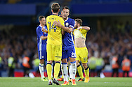 John Terry, the Chelsea captain consoles Chris Lines of Bristol Rovers at the end of the match. EFL Cup 2nd round match, Chelsea v Bristol Rovers at Stamford Bridge in London on Tuesday 23rd August 2016.<br /> pic by John Patrick Fletcher, Andrew Orchard sports photography.