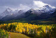 A clearing snowstorm over the rugged San Juan Mountains with a sea of aspen trees in the foreground.