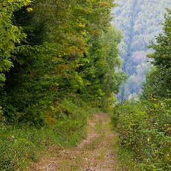 The border swath between Easton, Maine and Bath, New Brunswick. Part of the International Appalachian Trail.