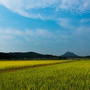 Anseong, South Korea