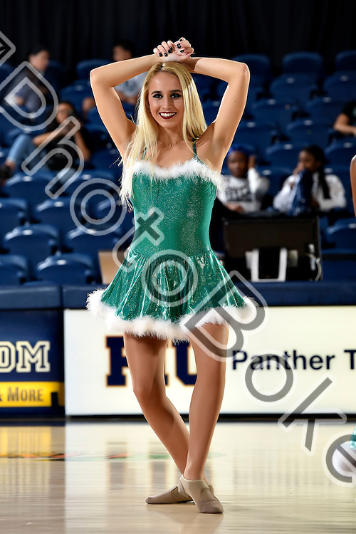 2016 December 15 - FIU Golden Dazzlers performing at FIU Arena, Miami, Florida. (Photo by: Alex J. Hernandez / photobokeh.com) This image is copyright by PhotoBokeh.com and may not be reproduced or retransmitted without express written consent of PhotoBokeh.com. ©2016 PhotoBokeh.com - All Rights Reserved