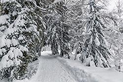 THEMENBILD - Ein Winterwanderweg rund um den Schwarzsee, aufgenommen am 10. Jänner 2019, Kitzbuehel, Oesterreich // A winter hiking trail around the Schwarzsee at Kitzbuehel, Austria on 2019/01/10. EXPA Pictures © 2019, PhotoCredit: EXPA/ Stefan Adelsberger