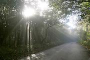 Brumadinho_MG, Brasil...Estrada de asfalto proximo ao Voo Livre da Serra da Moeda...Asphalt road next to the Voo Livre in Serra da Moeda...Foto: LEO DRUMOND /  NITRO