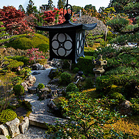 """Shobo-ji was established in 754 by a monk called Chii - a disciple of Ganjin, who built Toshidai-jiin Nara.  Like many temples in Kyoto, Shobo-ji was burned during the wars, then reconstructed in 1615. The temple has two interesting zen gardens, particularly the """"Beasts and Birds Garden"""" named after the shape of some of its rocks. The temple grounds are elevated compared to the rest of the valley, which gives a view of the surrounding area wthat incorporates borrowed scenery such as the distant mountains into the overall garden design.  Shobo-ji pays particular attention to flowers; ikebana can be seen on the temple grounds and in the buildings. In addition, the tsukubai water basin is usually decorated with flowers as well."""