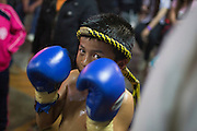 Jan 24, 2014 - Chiang Mai, Thailand - <br /> <br /> Nine Year Old Muay Thai Fighter<br /> <br /> Focus prepares mentally before his fight at the Thapae Muay Thai Stadium in Chiang Mai. PETCHFOGUS SITTHAHARNAEK, 9, aka Focus is the top fighter for his age and weight in Chiang Mai. He has begun fighting older, heavier opponents to continue to improve his skills. Fighters are typically paid 1000 baht (0) per fight.<br /> ©Exclusivepix