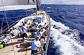 2017 Caribbean 600 aboard Danneskjold