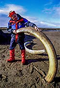 Tourist finds two mammoth tusks partly buried in mud, New Siberian Islands, Arctic Siberia
