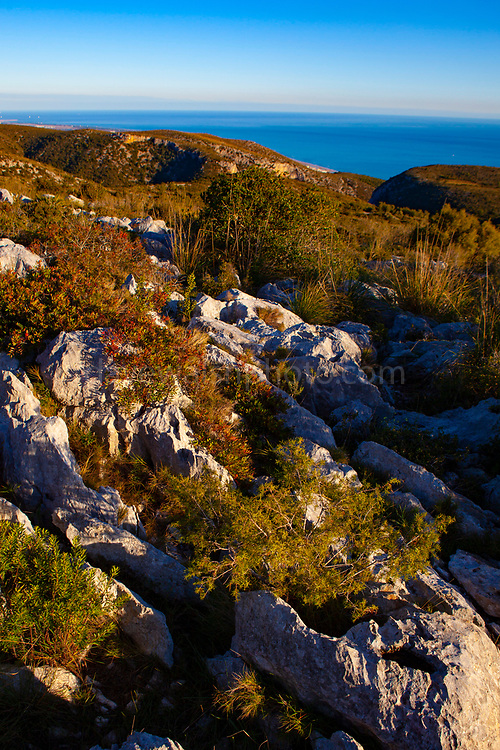 Limestone clints and grykes in the Parc Natural del Garraf, near Barcelona, Catalonia, Spain.