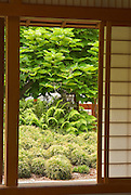 View from the Exhibit House at the Japanese Friendship Garden in Balboa Park, San Diego, California