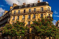 Beautiful apartment building at 18 rue du Dragon, 6th arr., Paris, France.