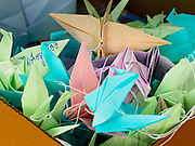 """06 JULY 2015 - BANGKOK, THAILAND:  A box full of paper doves during a protest called """"Wing of Peace"""" at Thammasat University/ More than 100 people gathered at Thammasat University in Bangkok Monday to show support for 14 students arrested two weeks ago. The students were arrested for violating orders against political assembly. They face criminal trial in military courts. The students' supporters are putting up """"Post It"""" notes around Bangkok and college campuses up country calling for the students' release.     PHOTO BY JACK KURTZ"""