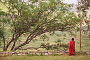 Novice monk. Wangdiphrodang, Bhutan.