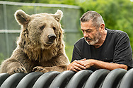 Otisville, New York - Bears at the Orphaned Wildlife Center on Aug.30, 2020. Jim Kowalczik and his wife Susan Kowalczik are licensed wildlife rehabilitators who run the center with the goal of providing safety and nurturing to animals that are truly orphaned and prepare them to be returned to a life in the wild.