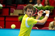 2013 Tennis