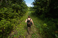 Edwin Scholes hikes along an abandonned logging road covered in vines near Labilabi, Halmahera Island, Indonesia.