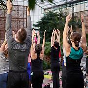 20200112 Greenhouse Yoga tif1