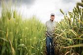 Farms: Grains