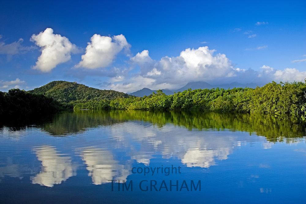 Mossman River, Daintree Rainforest, Australia