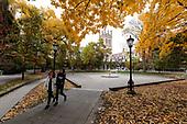 2019 Fall Colors