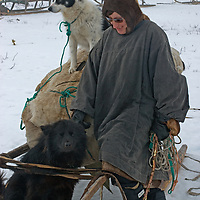 """North of the Arctic Circle in Russia, Katerina (""""Katya"""") Vaucheskaya, a nomadic Komi reindeer herder, pampers her dogs as she prepares one of her sleds for migration to another camp."""