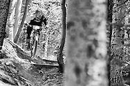 Jeremy Horgan-Kobelski competes in Stage 3 of the Keystone Big Mountain Enduro in Keystone, CO. ©Brett Wilhelm
