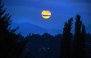 Clouds pass in front of a nearly full moon as it rises behind the Cascade Mountains in this view from Lake Forest Park. August's 100% full moon, happening Monday night (Aug. 3, 2020), is named a Sturgeon Moon after North America's largest fish, the lake sturgeon. The moonrise is visible rising in the southeast. (Mike Siegel / The Seattle Times)