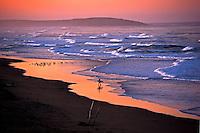 090-P74566<br /> <br /> Sonoma Beach State Beach<br /> ©2011, California State Parks.<br /> Photo by Brian Baer