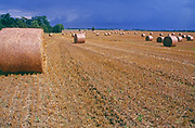 A08AME Round staw bales in Suffolk field after summer harvets